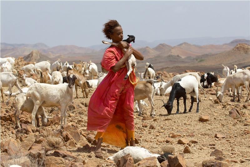 REVIEW: Desert Flower – True Story of Somalian Supermodel Waris Dirie