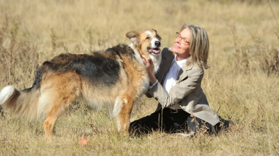 2012 Dallas International Film Festival Announces First Fifteen Titles