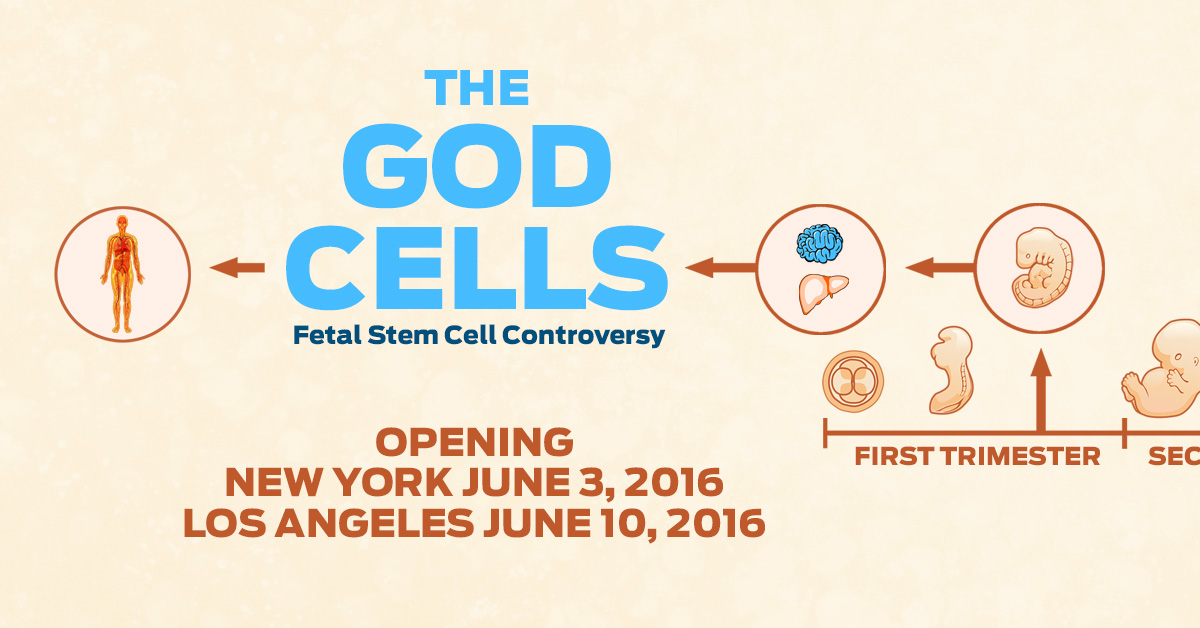 THE GOD CELLS,