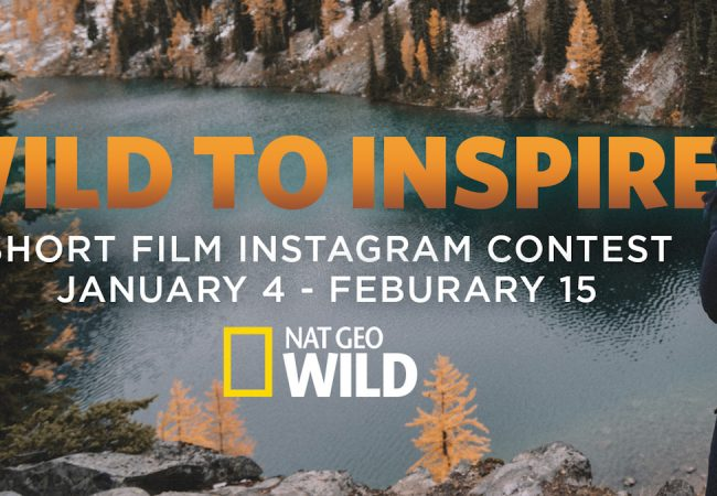 FILMMAKERS: Nat Geo WILD Launches 'WILD TO INSPIRE' Short Film Contest