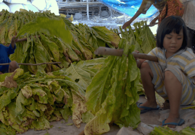 Child Labor Documentary INVISIBLE HANDS Opens in Theaters on Black Friday