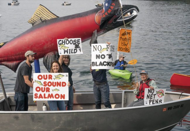 """Concerned citizens protest net-pen salmon farms at a Cooke Aquaculture facility. Eight months later, the state legislature voted to stop renewal of leases for Atlantic salmon net pens in Puget Sound. Bainbridge Island, Washington."" PATAGONIA FILM ""ARTIFISHAL"" Photo credit: Ben Moon"