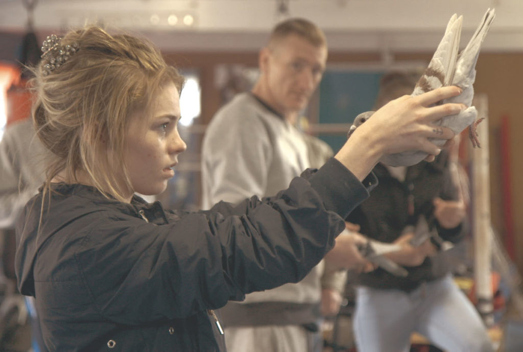 Scheme Birds. Gemma at the weekly pigeon beauty contest in the boxing gym.