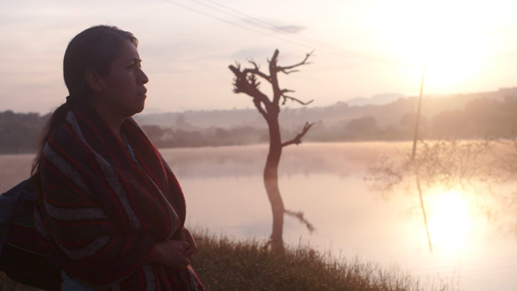 Mercedes Hernández appears Sin Señas Particulares by Fernanda Valadez, an official selection of the World Cinema Dramatic Competition at the 2020 Sundance Film Festival.