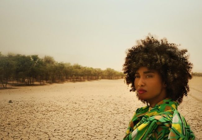Jared P. Scott's 'The Great Green Wall' Premieres July 30