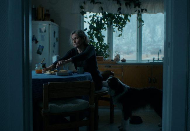"Grand Prize winner for Best Live Action Short: ""Ivo""directed by Christina Lande"