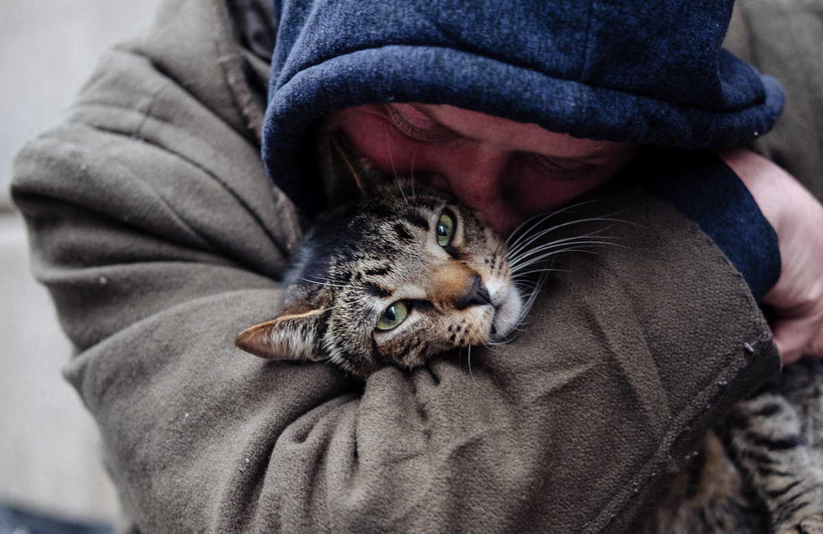 CAT DADDIES. David Giovanni hugs his cat Lucky in New York City.